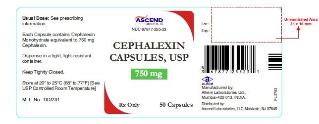 Buy Cephalexin Usa